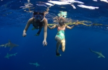 Drowning is the most common cause of accidental death for tourists in Hawaii